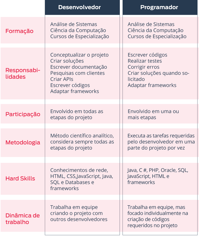 desenvolvedor e programador