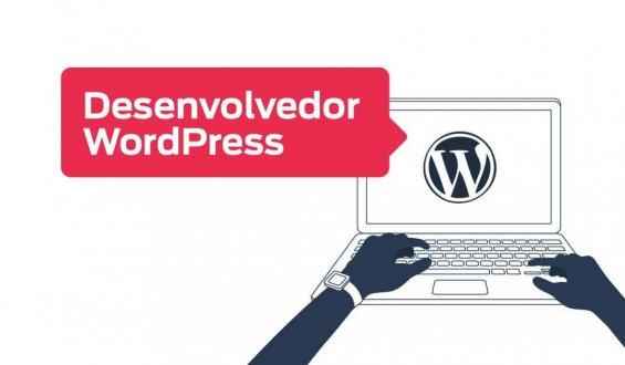contratar desenvolvedor WordPress